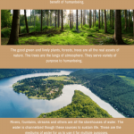 Essay On Nature | Its Role & Importance of Save Nature For Students
