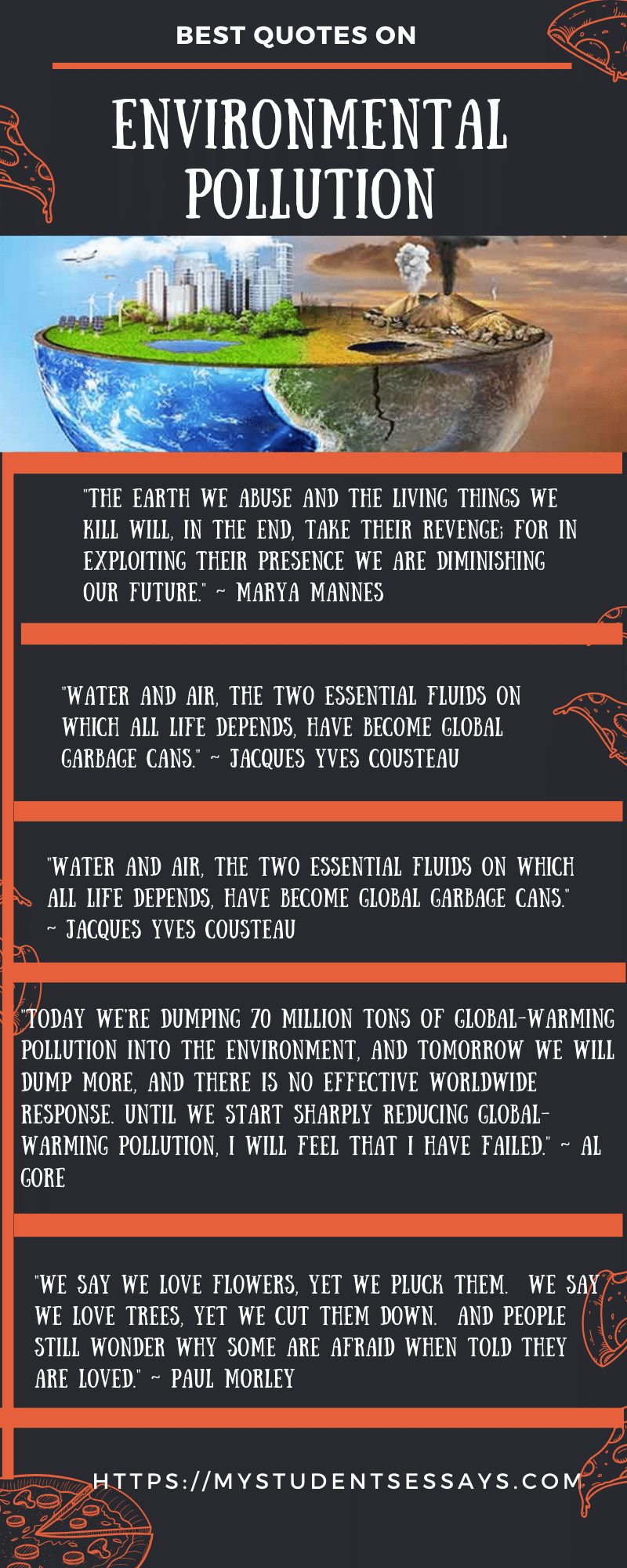 Essay on Environmental Pollution, Causes, Impacts & Solutions