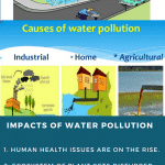 Essay on Water Pollution | Water Pollution Essays For Students