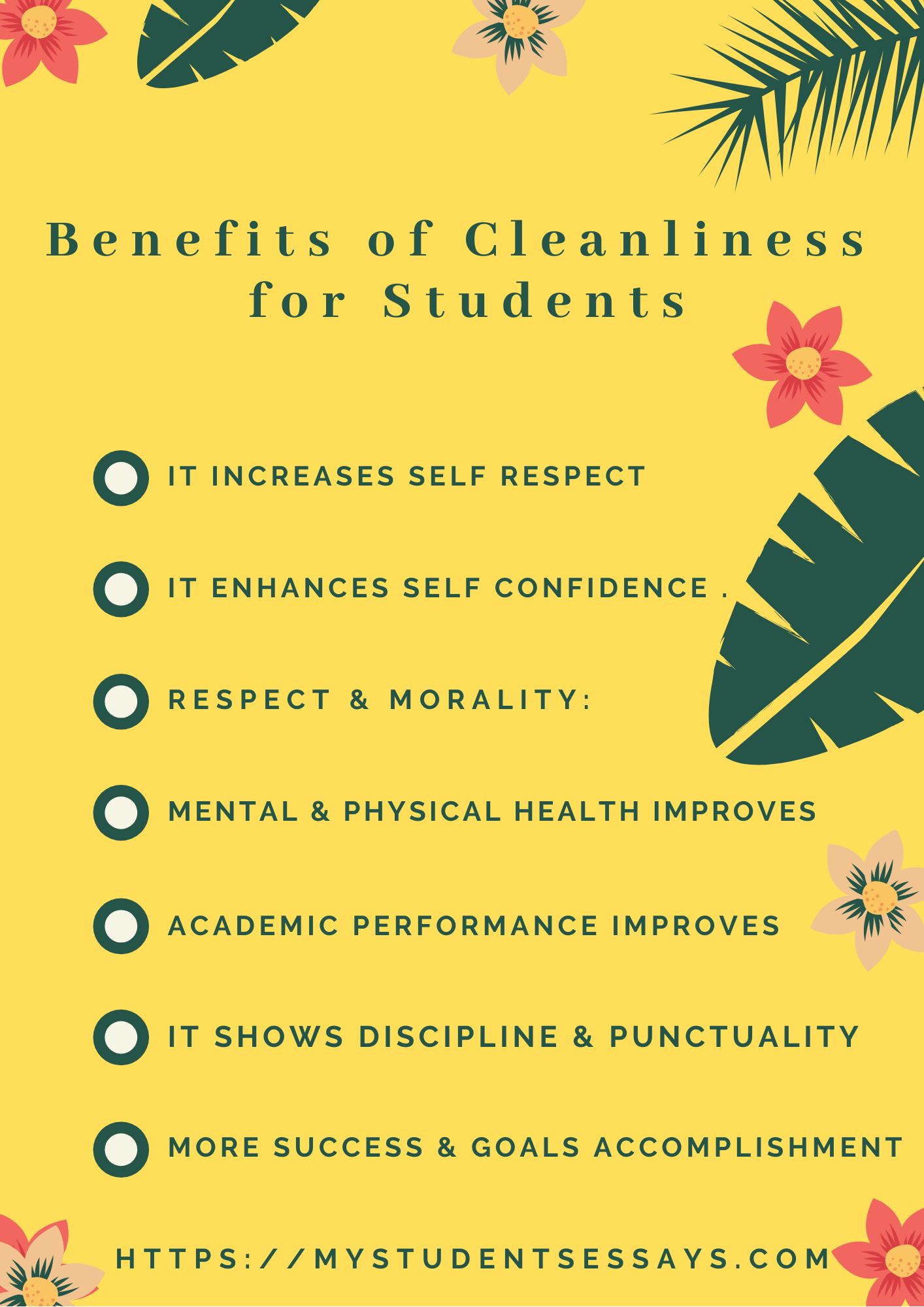 Essays on Cleanliness For Students