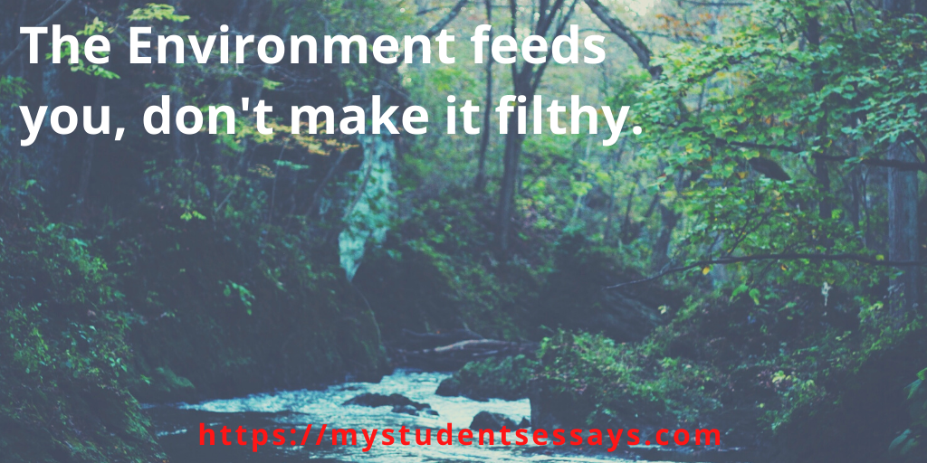 Catchy Environmental Slogans For Students