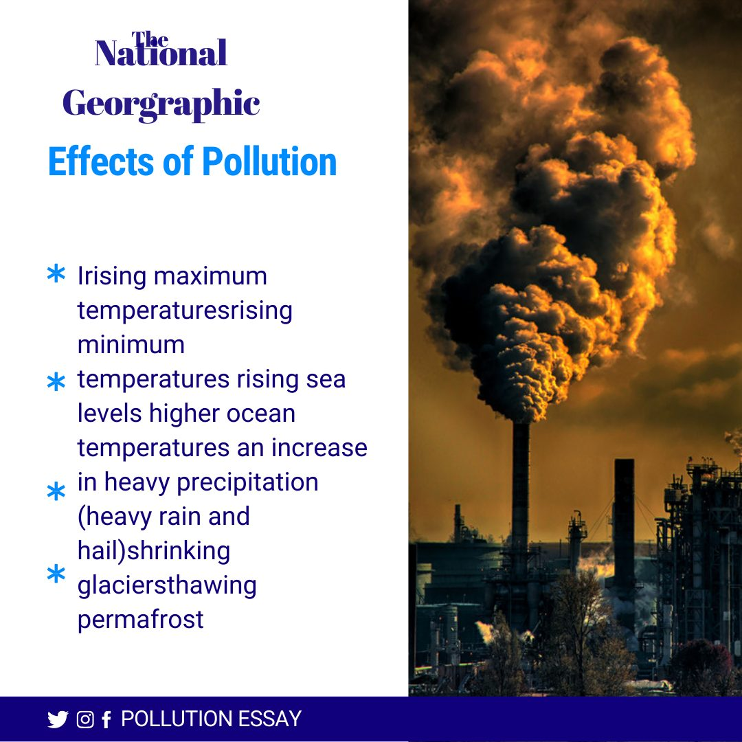 Effects of Pollution Essay