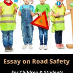 Essay on Road Safety, Importance & Rules For Students