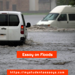 Essay on Flood For Children & Students | Causes & Impacts