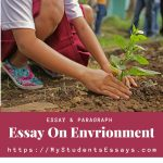 Paragraphs on Environment | Importance, Benefits & how to Save it
