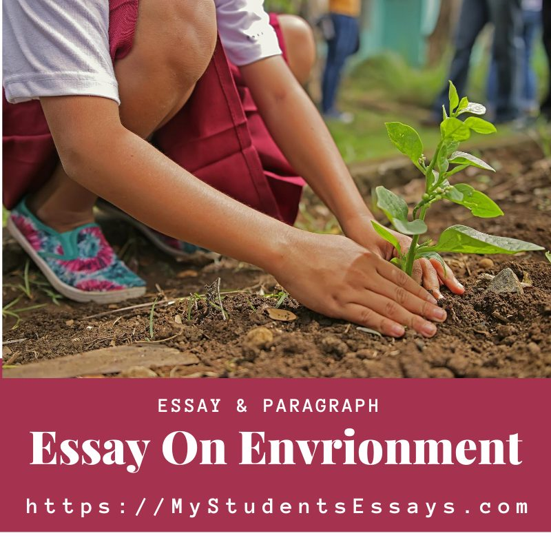Essay On Environment For Students