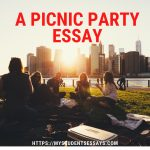 Essay on a Picnic Party   Short & Long Essay For Students