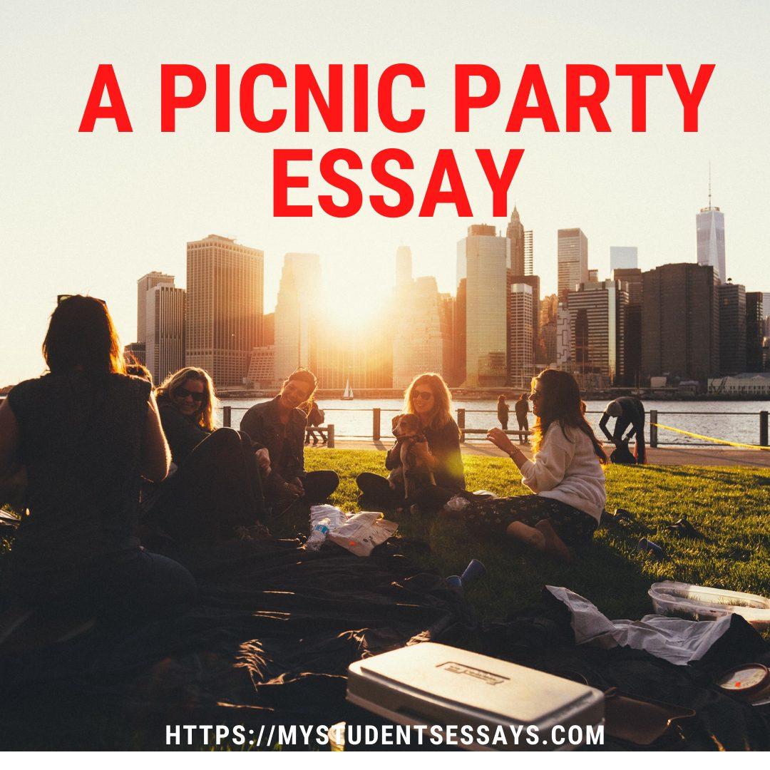 A picnic party essay