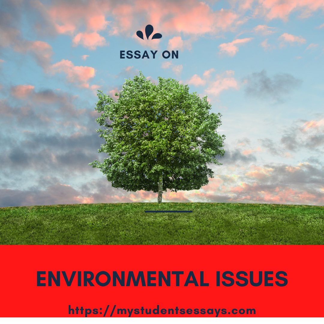 Essay on Environmental Issues For Students