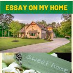 Essay on My House | My Home Essay For Children & Students
