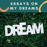 Essay on My Dreams   My Future Plans & Goals For Students