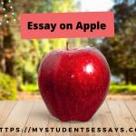 Essay on Apple | My Favorite Fruit Apple 10 Lines & More Sentences