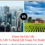Essay on City Life | The Life in a Big City Essay For Students