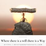 Essay on Where there is a will there is a way [ Meaning & Explanation ]